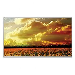 Lloyd L55U2F0IU 55 inch Smart ULED Television 140cm